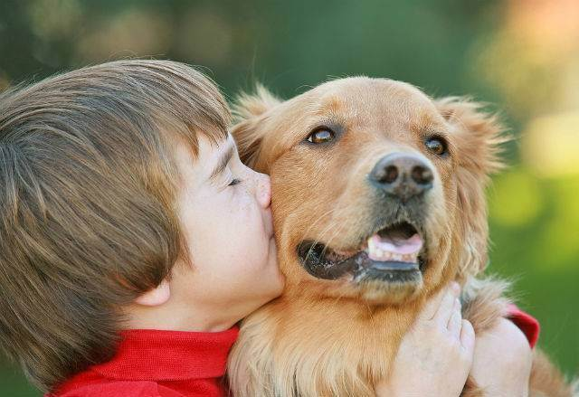 Стоит ли заводить собаку для ребенка