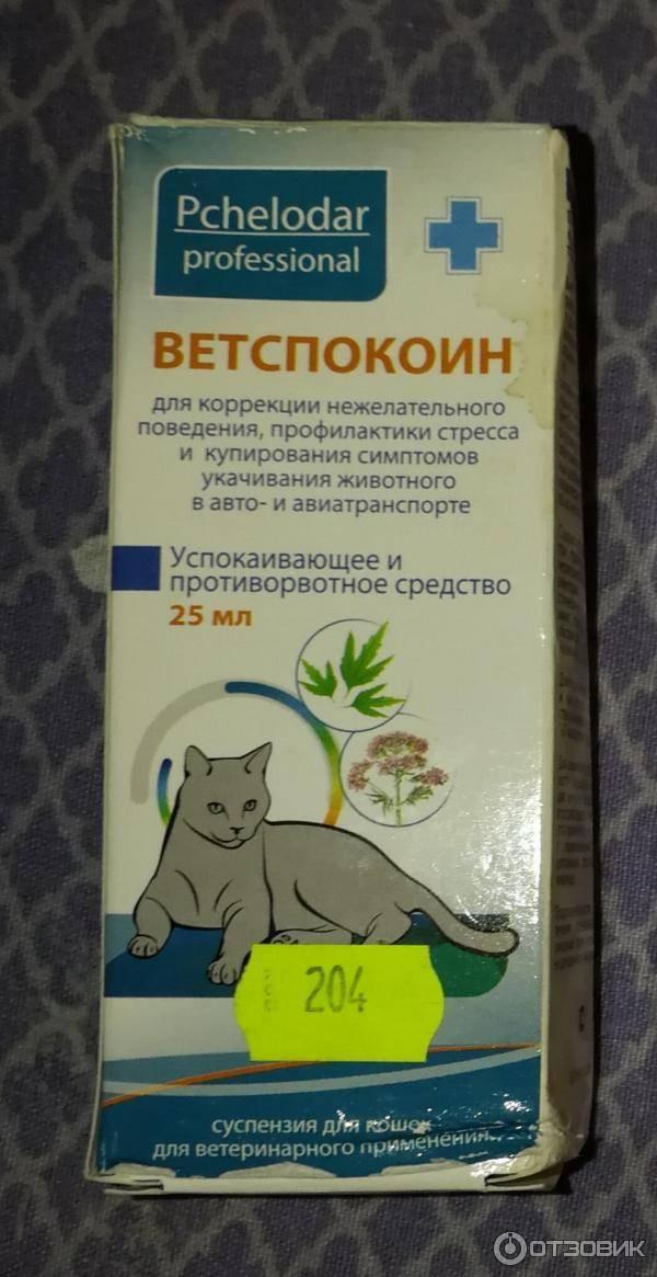 Успокоительные средства для котов — какие бывают и как правильно выбрать препарат