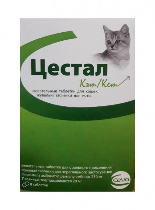 Цестал для кошек: описание и инструкция по применению