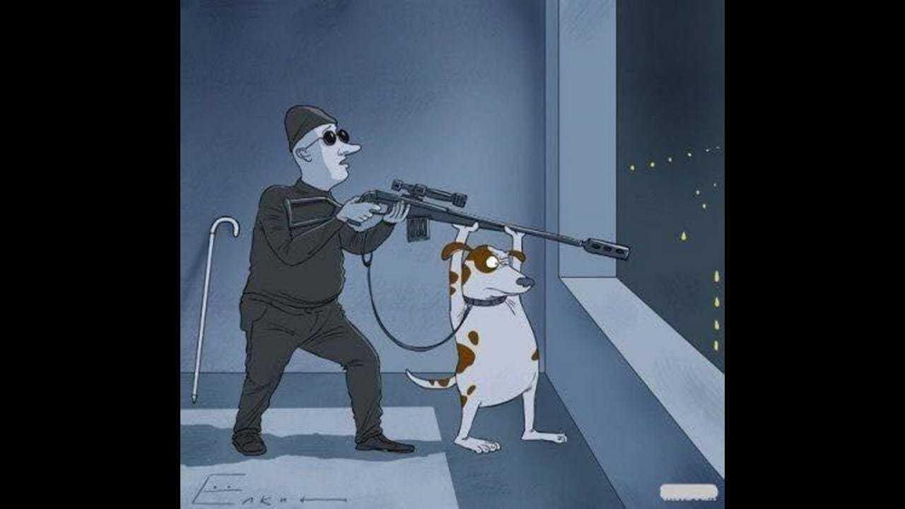 Ветеринар на дом: профессиональное лечение с комфортом для животных