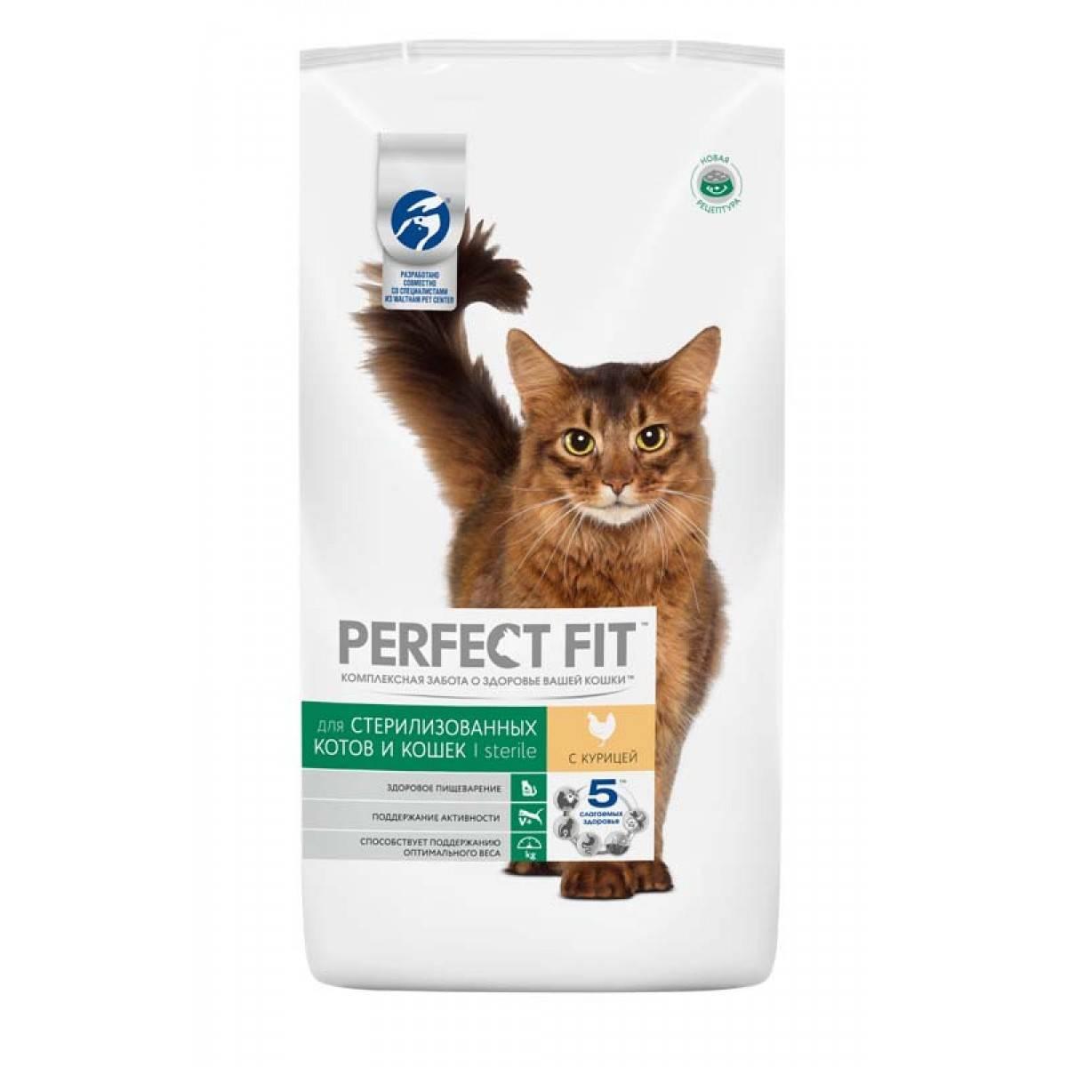 Сухой корм для стерилизованных кошек: свойства, производители, выбор и режим питания