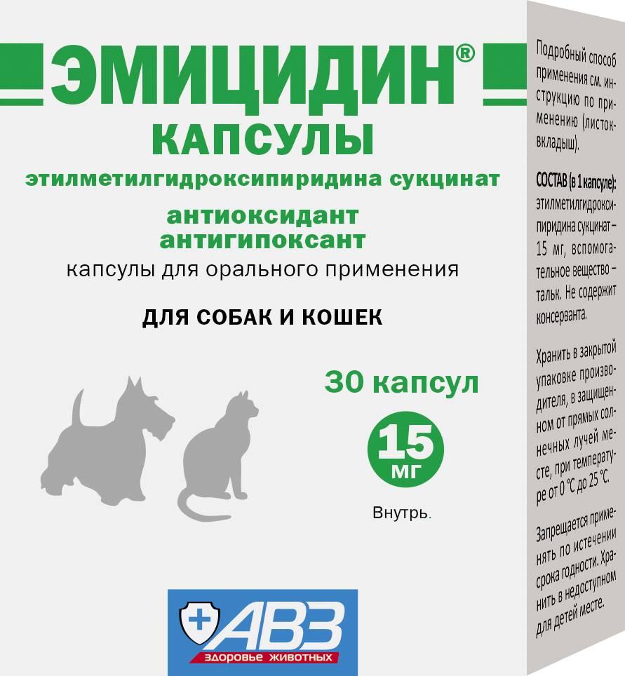 Эмицидин для кошек: инструкция по применению, аналоги