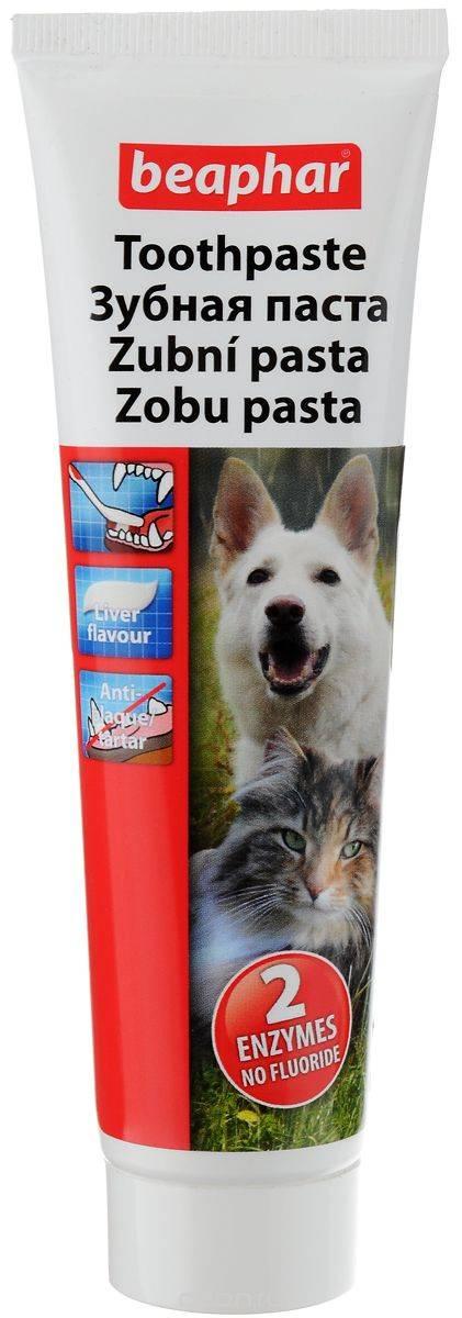 Зубная щетка для кошек: от зубного камня и при гингивите, цена и почему ест пасту, разновидности на палец и жидкая, а также бренды озон, hartz и cliny гель.