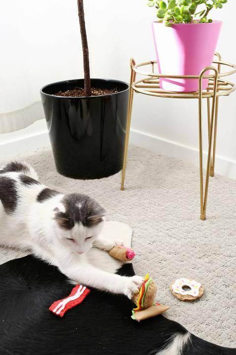 Самодельные игрушки для кошки