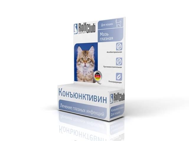 Конъюнктивит у кошек: виды,  симптомы, лечение (основные препараты  и их дозировка)