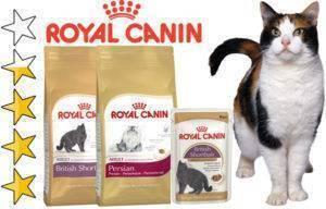 Обзор корма для кошек royal canin – отзывы, рекомендации
