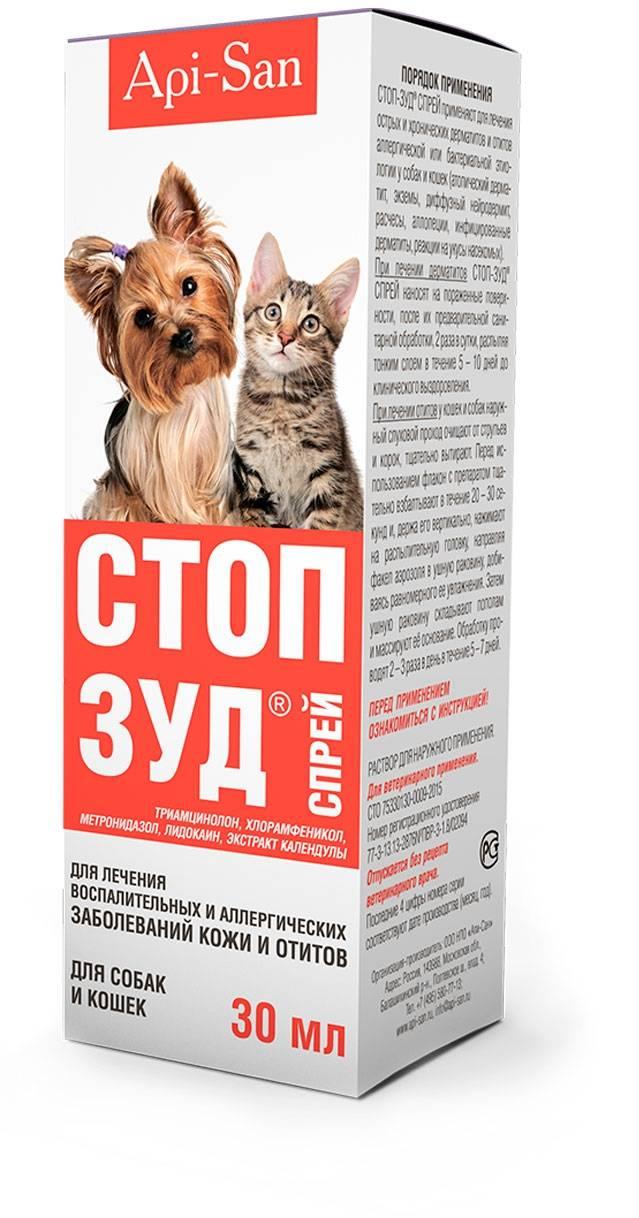 Стоп зуд для кошек: читаем все нюансы