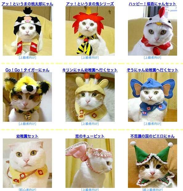 Японские имена кошачьи: познаем вопрос