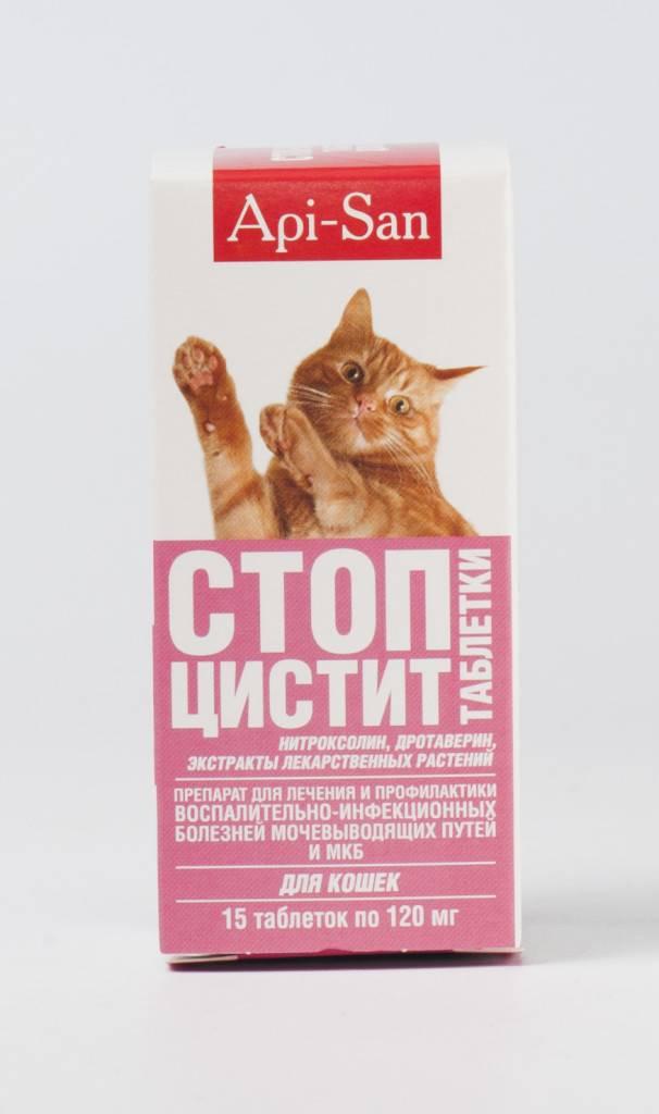 Что делать, если у кота недержание мочи?
