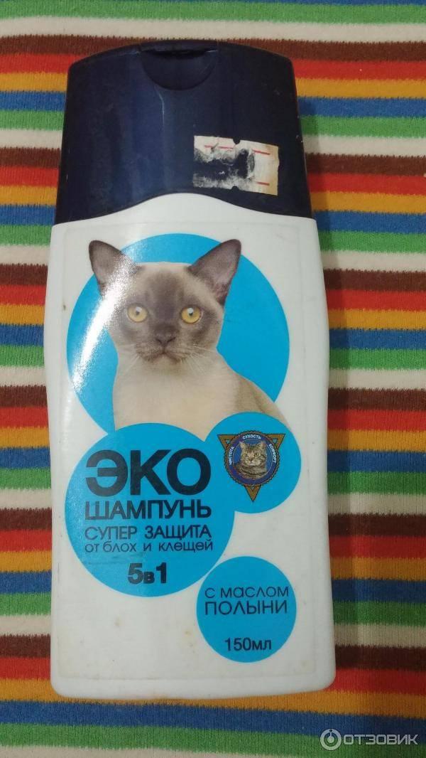 Лучшие капли от блох для кошек