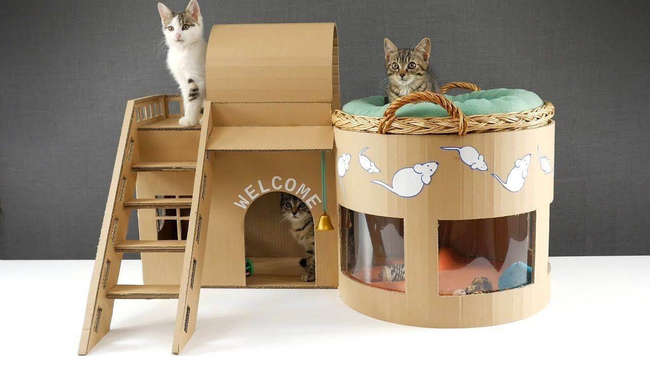 Домик для кошки из картонной коробки. мастер класс: инструкция, как сделать своими руками, чертежи с размерами, фото