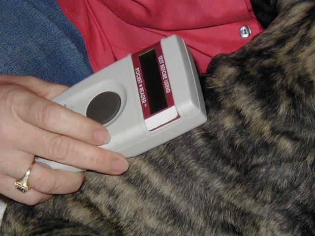 Нужно ли чипировать свою кошку и что принесет электронная идентификация животных