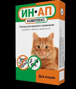 Как вывести блох у кошки: симптомы заражения, практические советы