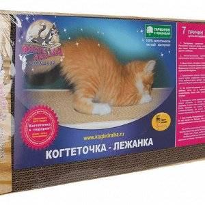 Витамины для кошек: зачем нужны и какие бывают