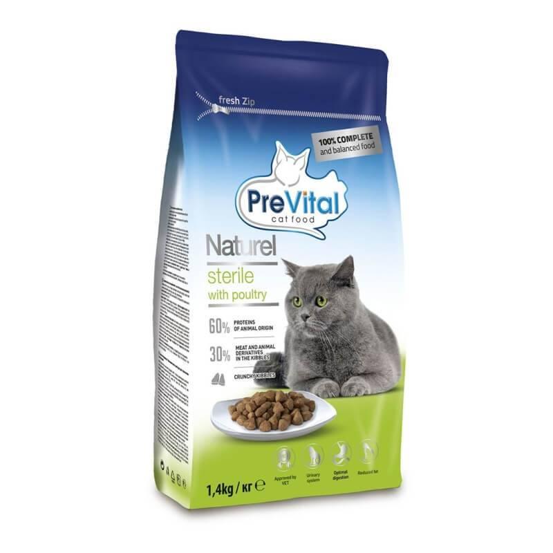 Корм холистик для кошек: характеристика класса, отличия от других кормов, рейтинг лучших холистиков для кошек