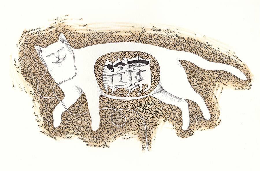Сколько кошка вынашивает котят, сколько длится беременность — рассматриваем обстоятельно
