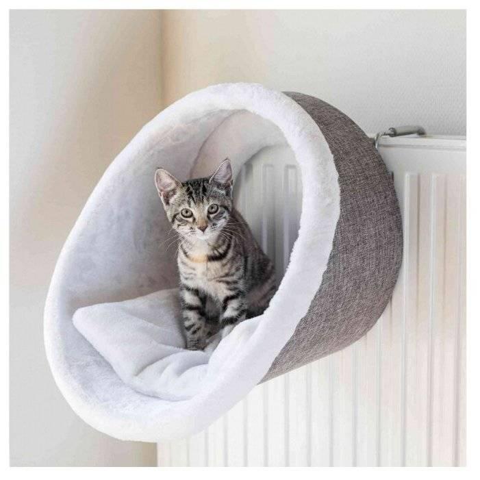Лежанка для кошки: выкройка своими руками, самостоятельный пошив подстилки, процесс изготовления пошагово
