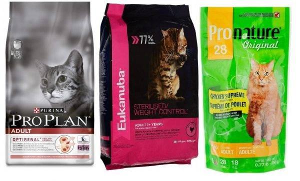 Корм для кошек leonardo adult cat poultry grain free