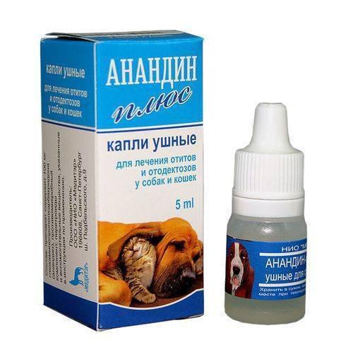 Капли от ушного клеща для кошек, а также для лечения отита: лучшие средства для кошачьих ушей