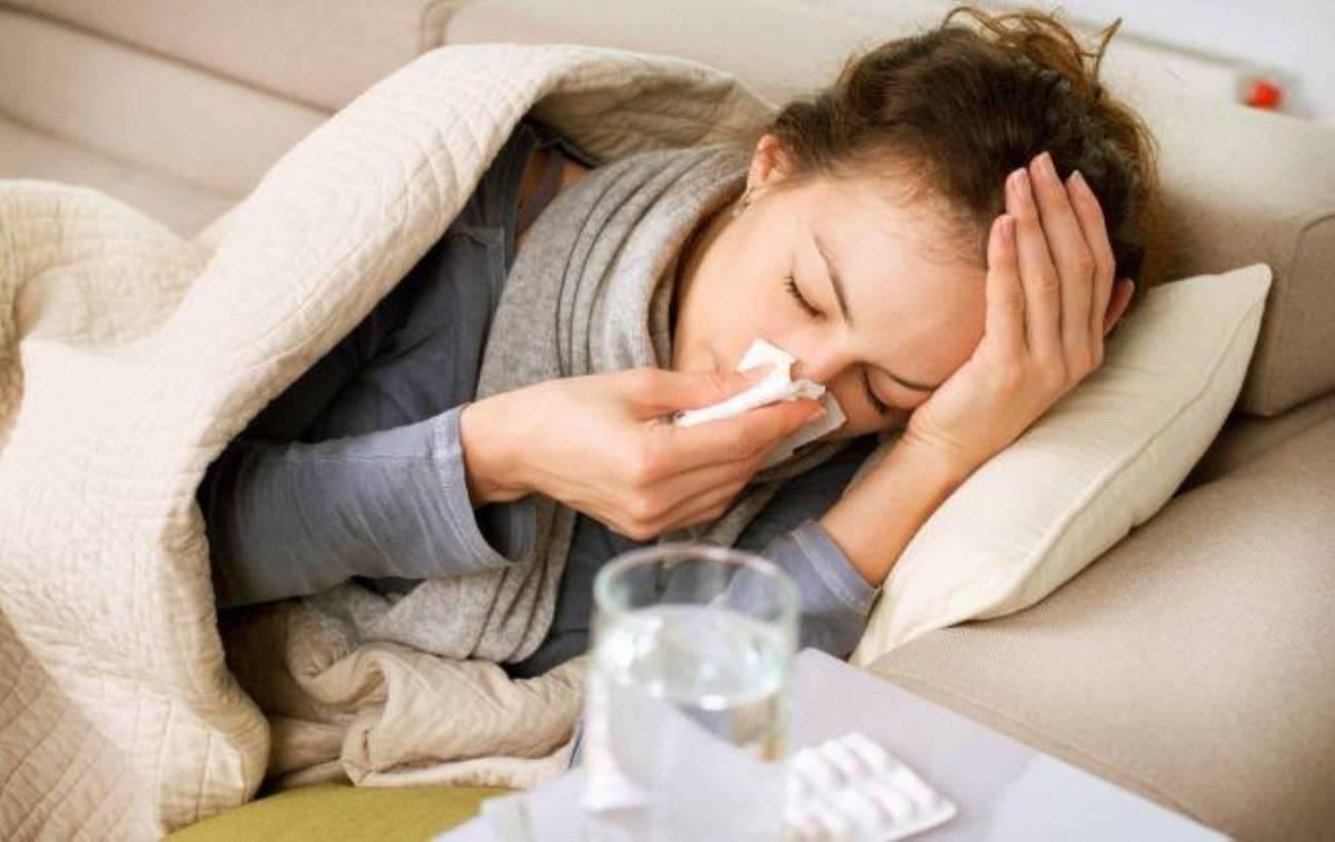 Может ли человек заразить кошку простудой: факты и рекомендации