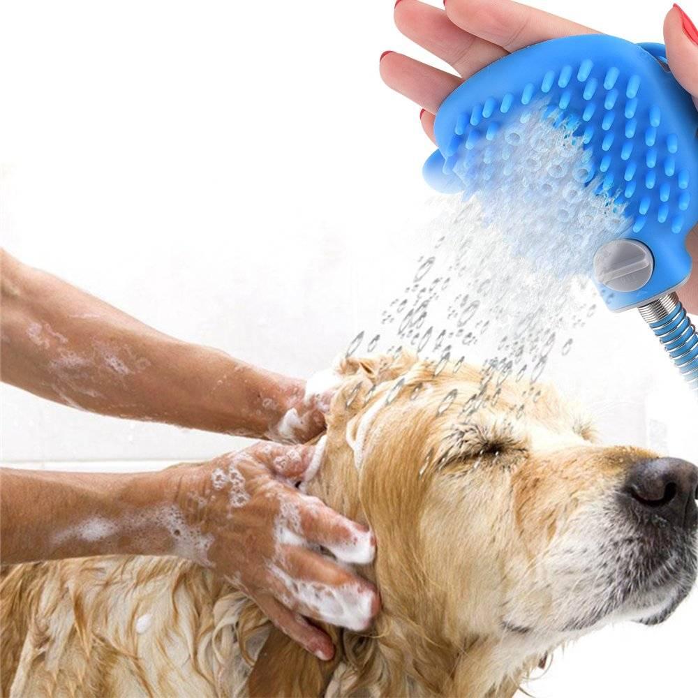 Как охладить собаку в сильную жару | как помочь в жаркую погоду