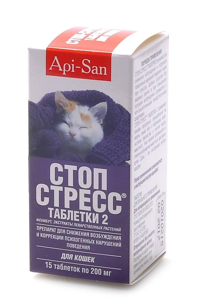 Кошка на нервах: выбираем успокоительное средство