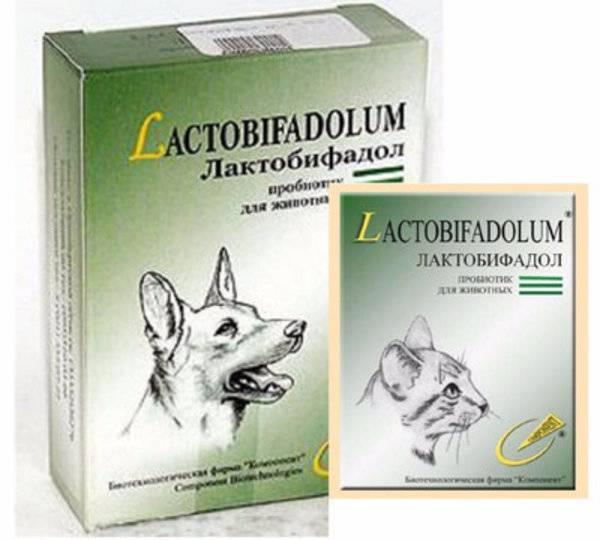 Инструкция по применению препарата «лактобифадол» для лечения кошек, совместимость с другими средствами