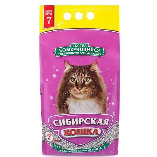 Топ-10 лучших кормов для кошек