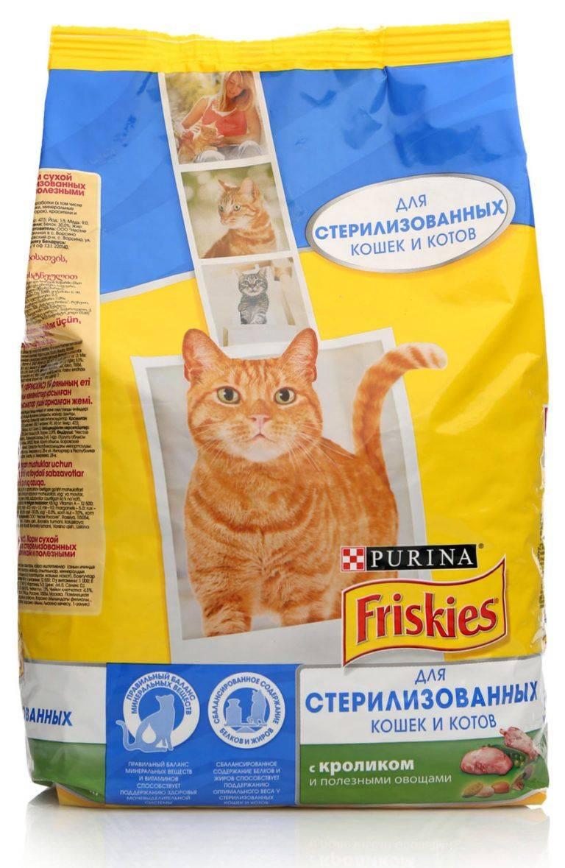Какой корм лучше для кастрированных котов по мнению ветеринаров