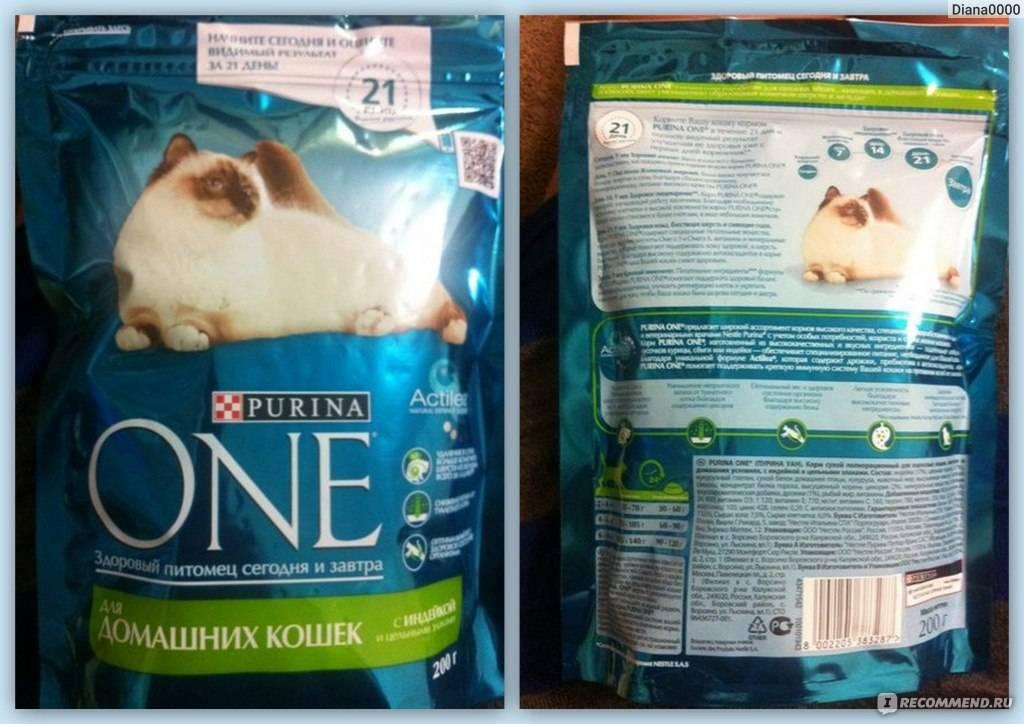 """Корм для кошек """"Purina one"""": состав сухого и влажного продукта и его виды"""