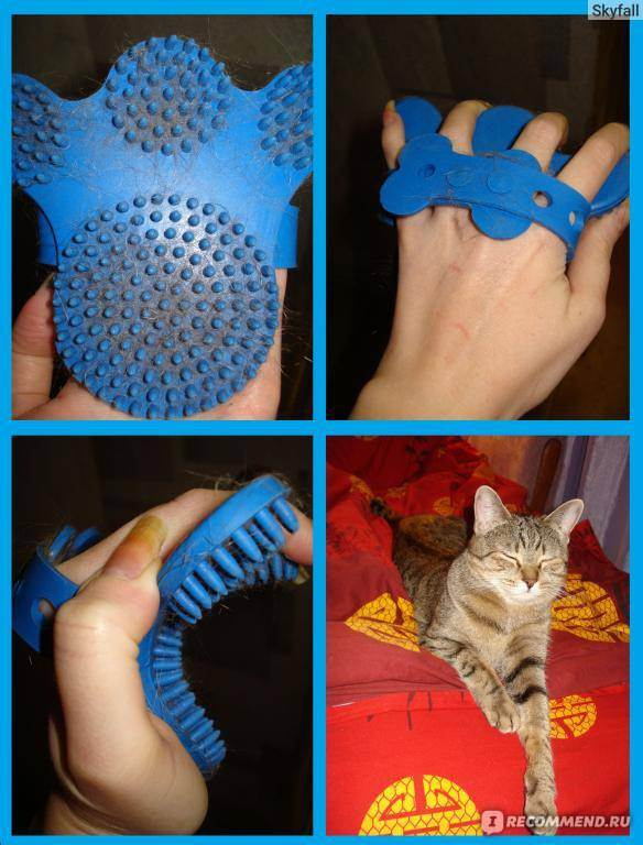Расческа для кошек – как правильно ее выбрать