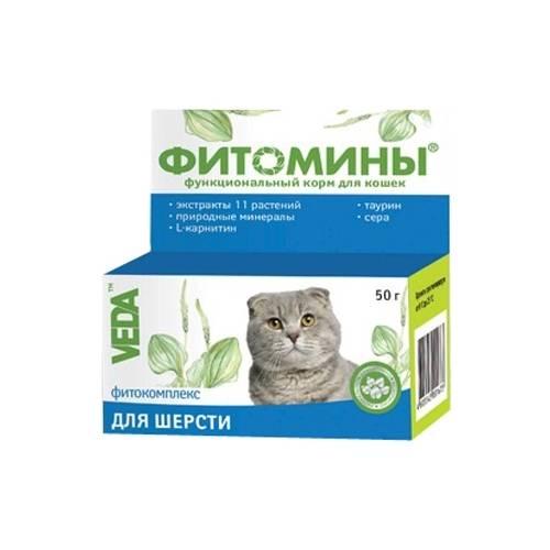 Какие витамины от выпадения шерсти нужны кошкам?