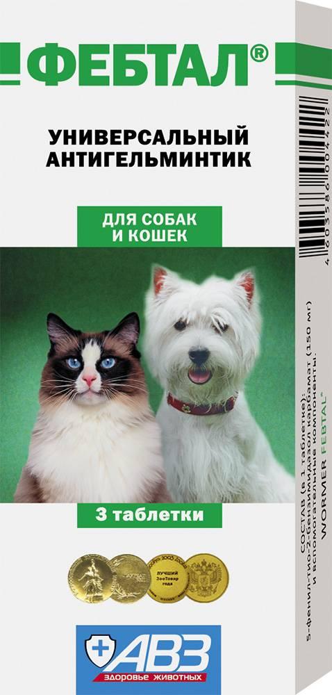 Фебтал комбо для собак инструкция по применению. инструкция по применению антигельминтика фебтал. состав и фармакологические свойства
