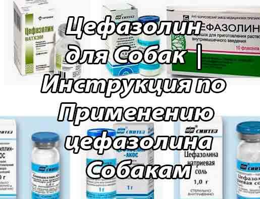 Цефазолин - инструкция по применению, аналоги, отзывы, цена