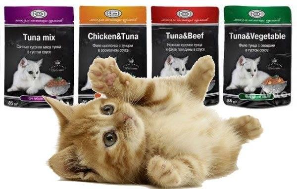 Корм пронатюр (pronature) для кошек | состав, цена, отзывы