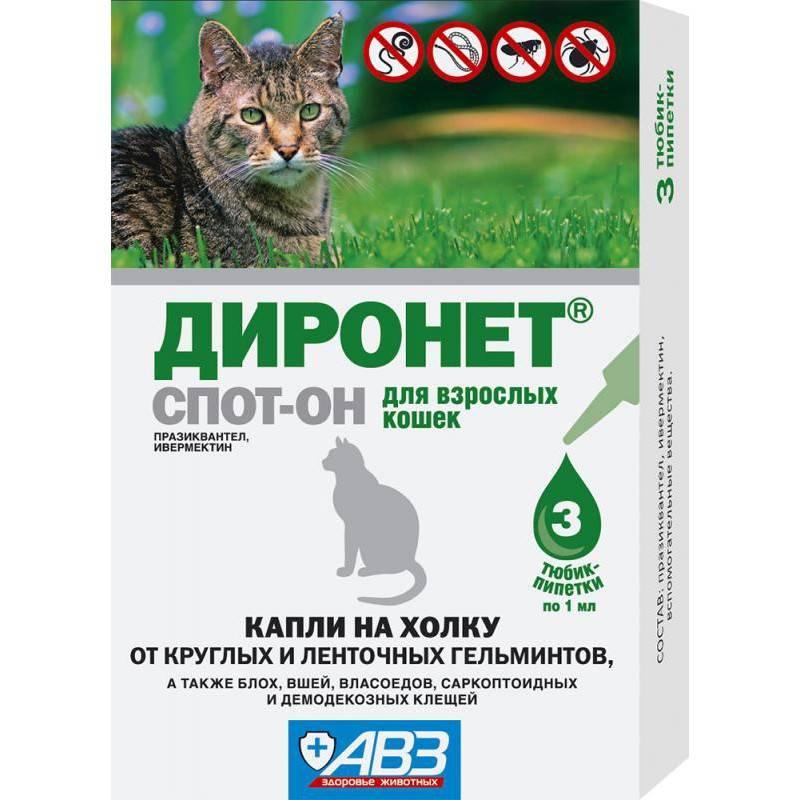 «диронет» для кошек: инструкция по применению