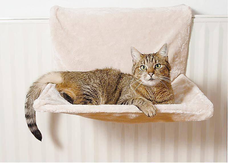 Лежанки для кошек: особенности, разновидности, тонкости выбора