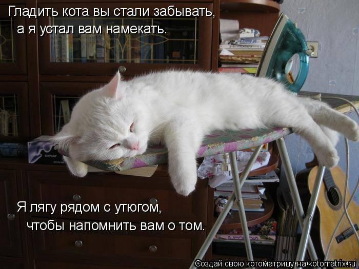 Кошка кусается когда ее гладишь: причины и что делать кошка кусается когда ее гладишь: причины и что делать