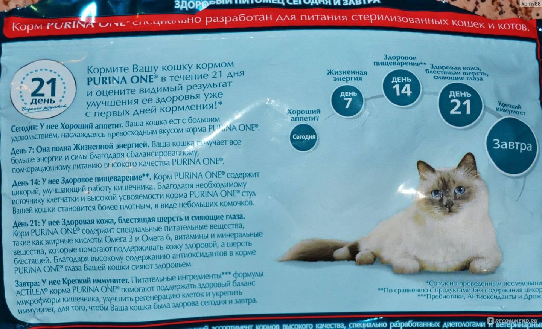 Феликс: отзывы ветеринаров и описание продукции