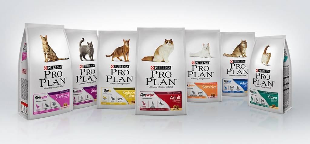 Корма проплан для кошек: виды и состав кормов, предложения сайта проплан и отзывы ветеринаров и владельцев