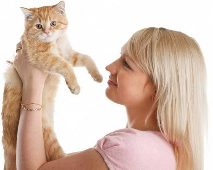 Любят ли кошки хозяев