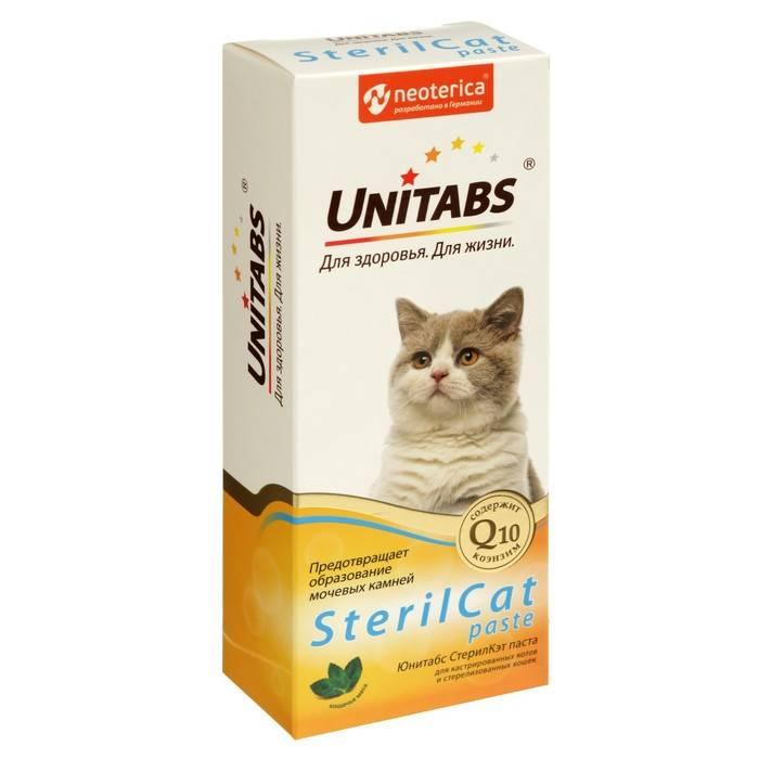Витамины для кошки при беременности