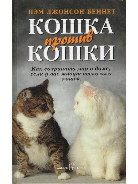 Как относятся к кошкам в странах мира