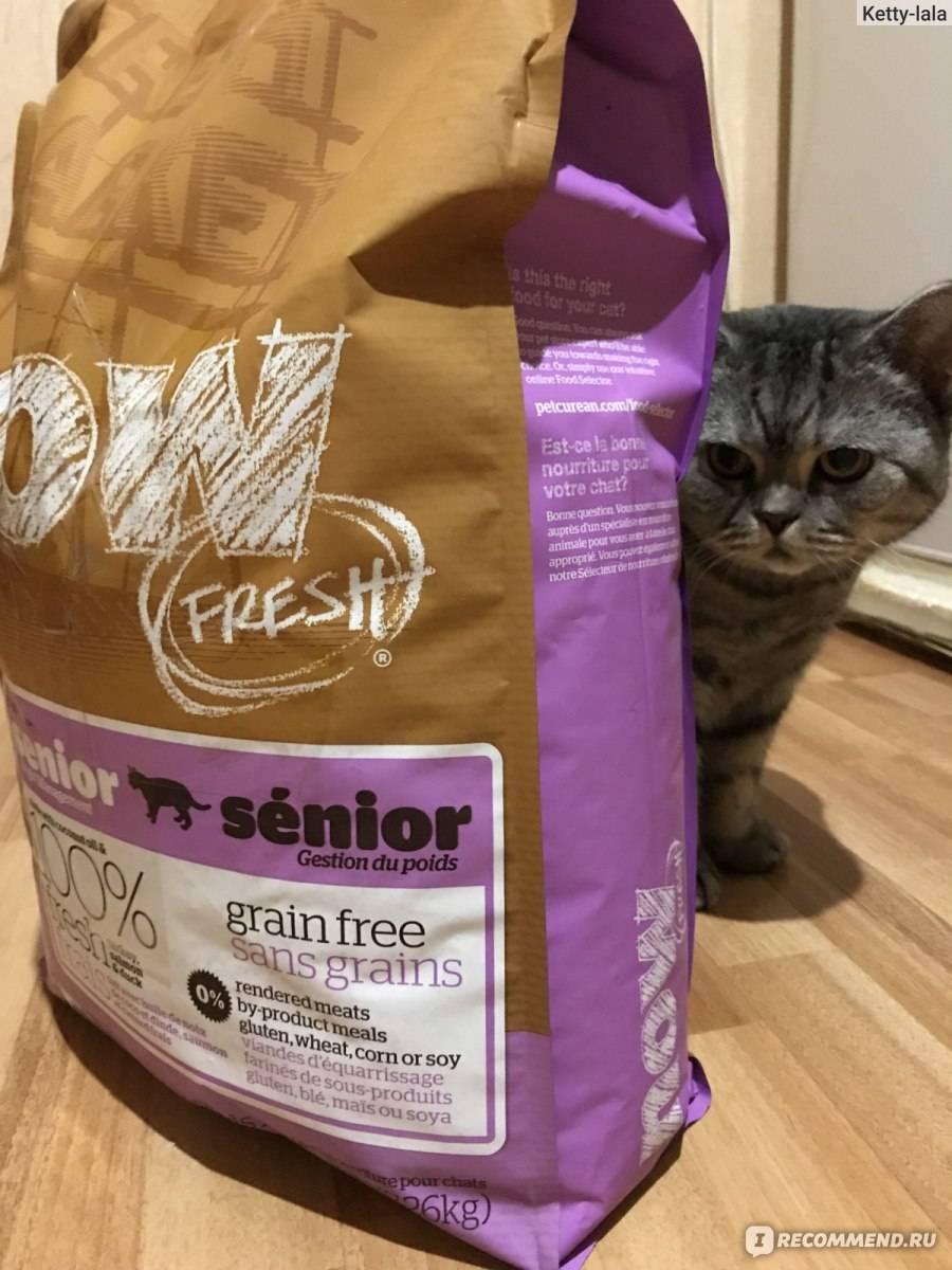 Корм для кошек now fresh: отзывы и разбор состава - петобзор