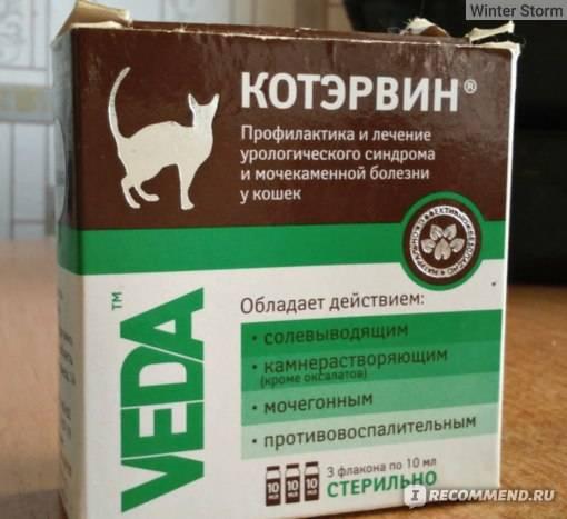 Котэрвин для кошек и котов