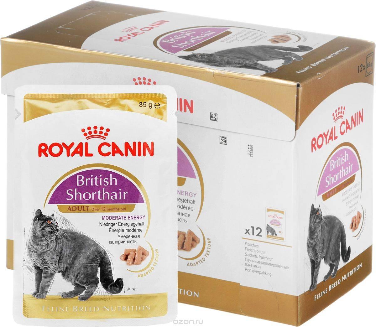 Отзывы ветеринаров о корме для кошек хиллс и гурмет