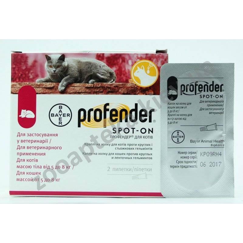 Профендер для кошек: инструкция по применению капель в лечении питомцев от глистов, отзывы ветеринаров и цена