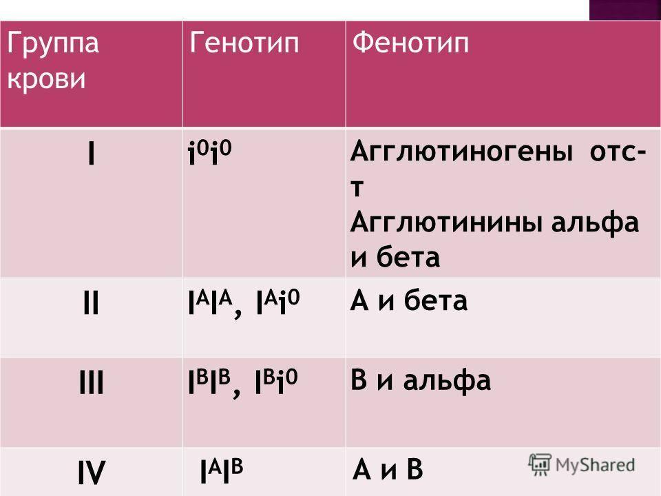 Группы крови у кошек: a, b, a/b. возможные проблемы. гемолиз