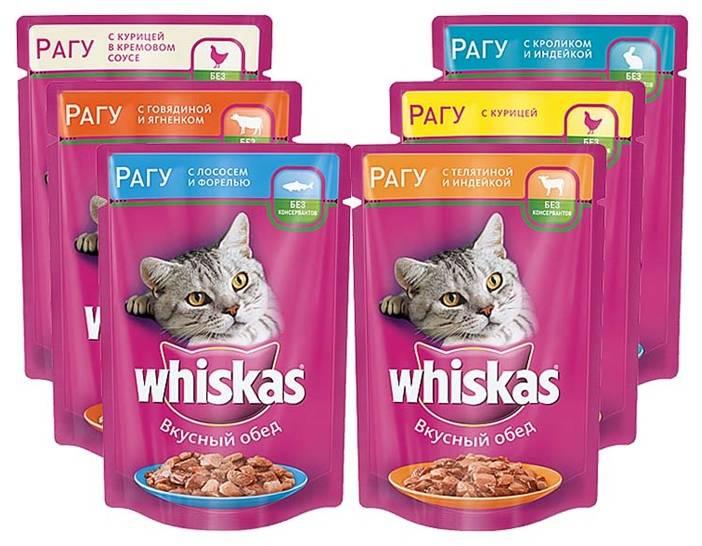 Вреден ли вискас для кошек и котят. можно ли кормить котенка вискасом