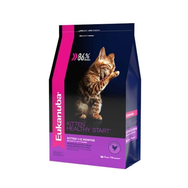 Советы ветеринаров: как правильно кормить взрослых домашних котов и кошек